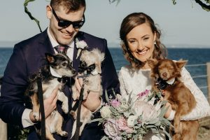 Puppy at wedding with faux native bouquet